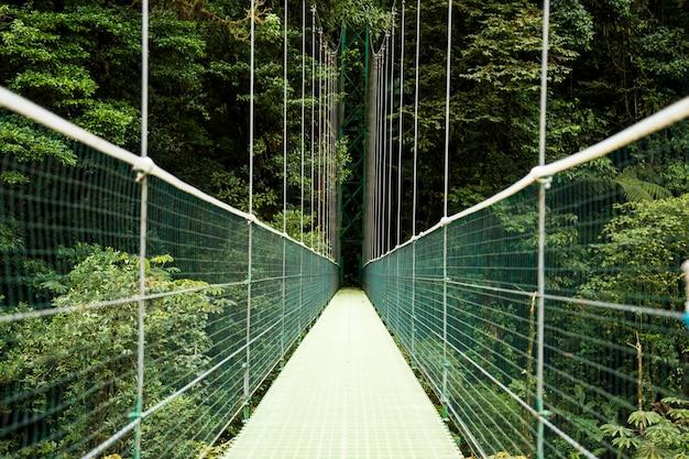 Vista del puente colgante sobre la selva tropical de costa rica