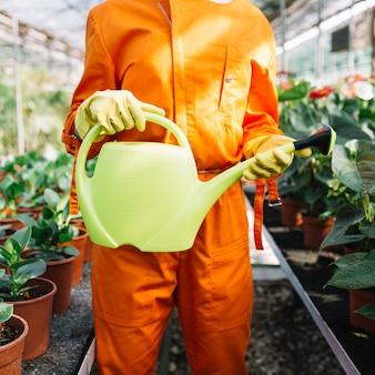 Vista de la sección media de un jardinero con regadera en invernadero