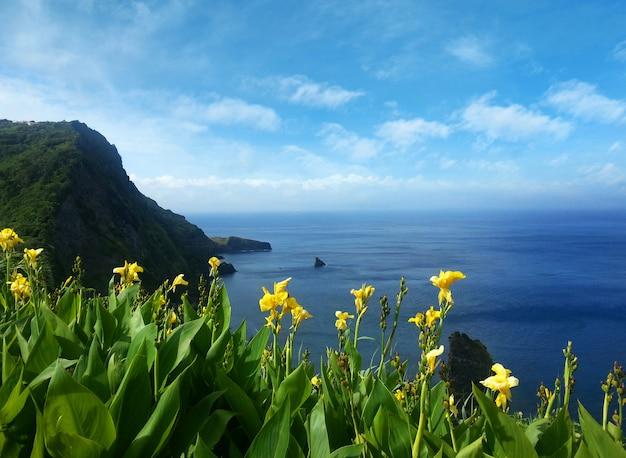 Vista sobre el mar en azores portugal
