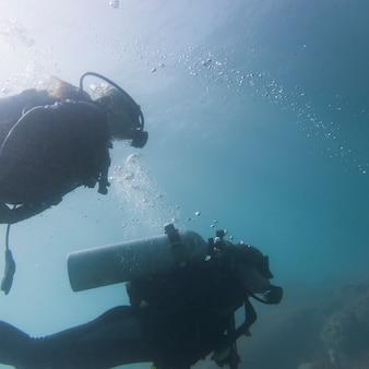 Vista submarina de buzos, ixtapa, guerrero, méxico