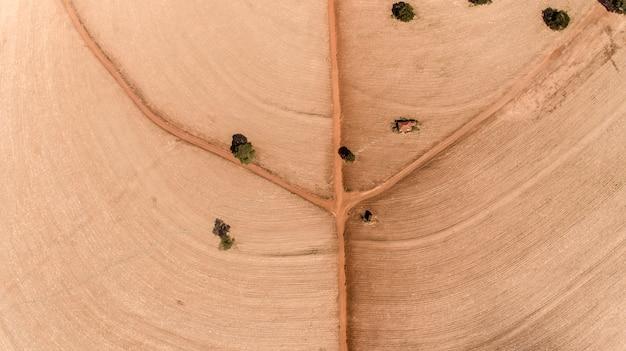 Vista superior aérea de volar el abejón de la tierra del campo. las carreteras forman el diseño de una hoja.