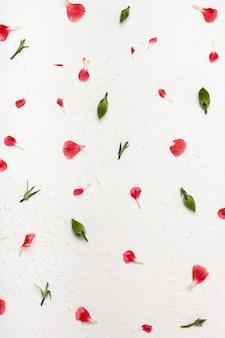 Vista superior arreglo floral de pétalos de colores