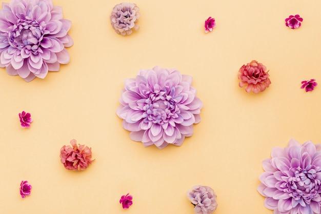 Vista superior arreglo floral sobre fondo amarillo