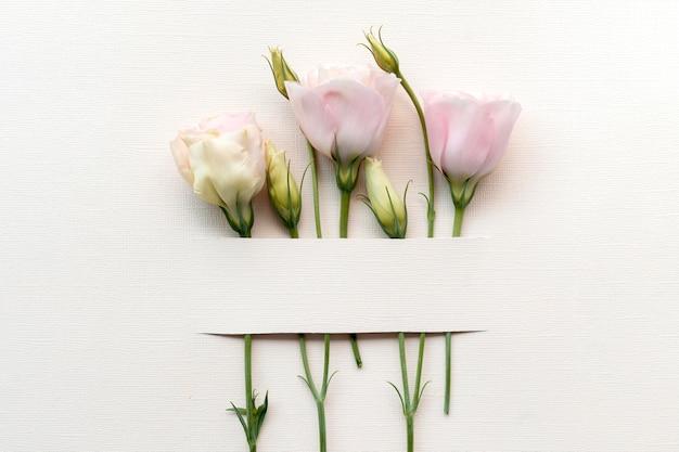 Vista superior del arreglo de flores hermosas