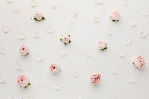 Vista superior del arreglo de rosas y pétalos