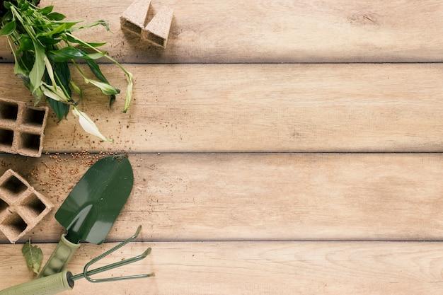 Vista superior de la bandeja de turba; planta; showel y rastrillo en escritorio de madera.