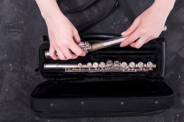 Vista superior de bolsa para flauta