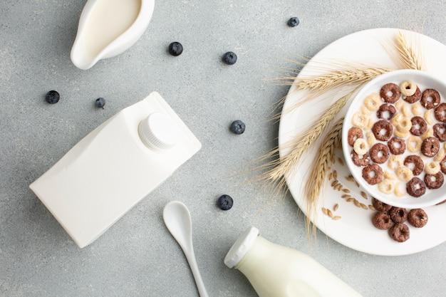 Vista superior botella de leche y tazón de cereal