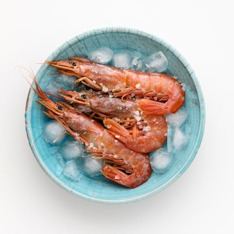 Vista superior de camarones en plato con cubitos de hielo