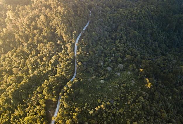 Vista superior del camino rural que pasa por el bosque verde y la montaña