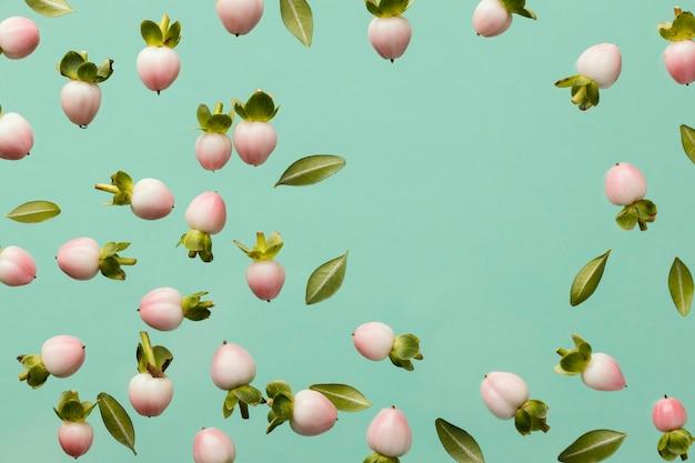 Vista superior de capullos de flores de primavera con espacio de copia