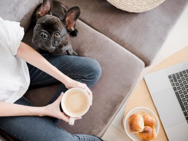 Vista superior chica con su lindo perrito
