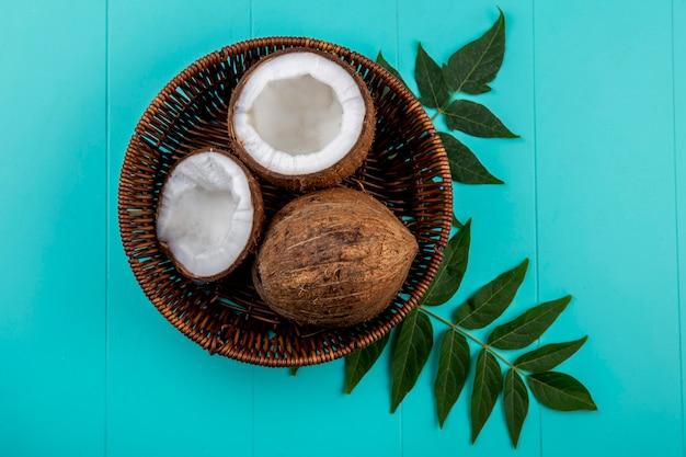 Vista superior de cocos marrones y grandes en balde con hojas en azul