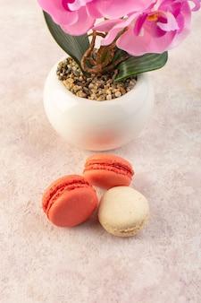 Una vista superior de coloridos macarons franceses con flores en el escritorio rosa pastel galleta azúcar dulce
