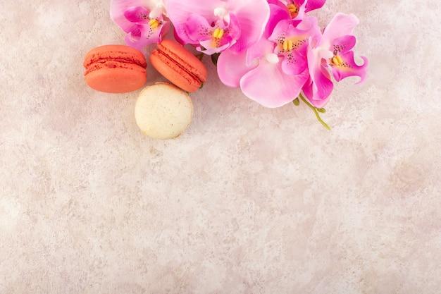 Una vista superior de coloridos macarons franceses con flores en el escritorio rosa pastel galleta color azúcar