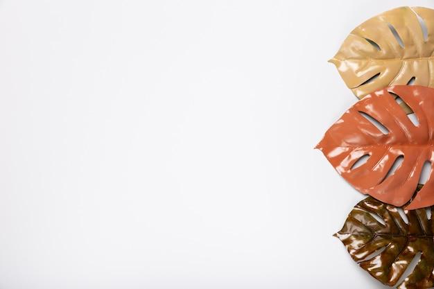 Vista superior de coloridos tonos marrones hojas