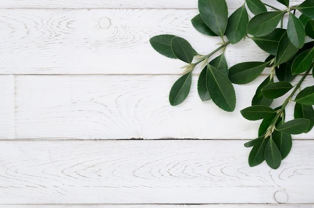 Vista superior del concepto de hojas con mesa de madera