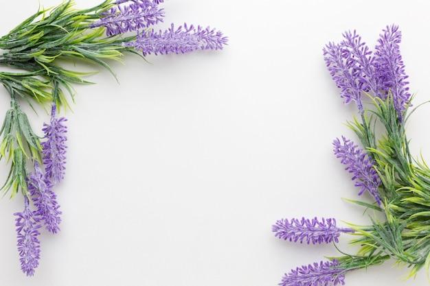 Vista superior del concepto de marco floral