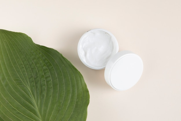 Vista superior de crema y hojas sobre fondo liso