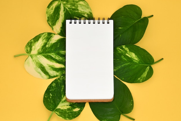 Vista superior del cuaderno en blanco abierto vacío en hojas de oro pothos