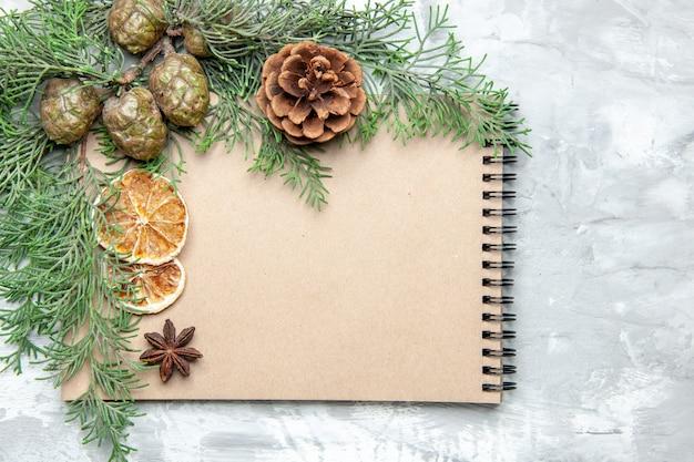 Vista superior cuaderno seco rodajas de limón anís ramas de pino sobre superficie gris