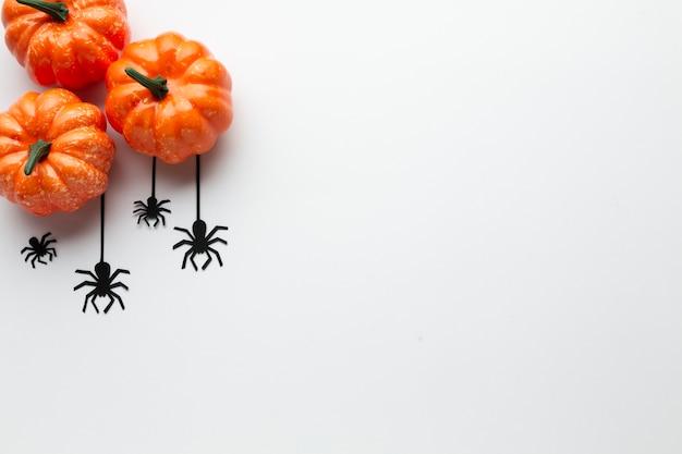 Vista superior decoración de calabazas y arañas