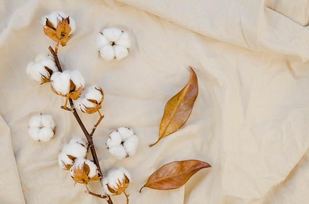 Vista superior decoración de flores de algodón