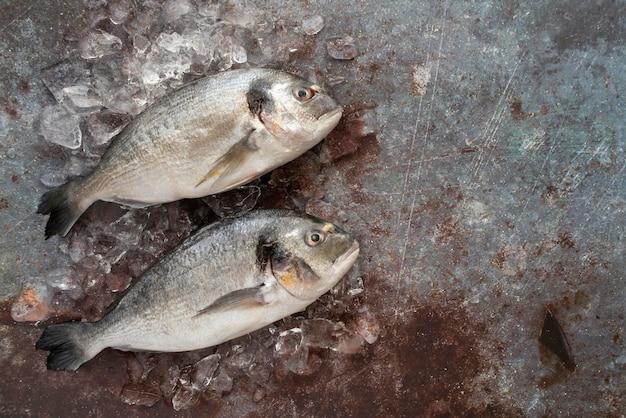 Vista superior del delicioso arreglo de mariscos.