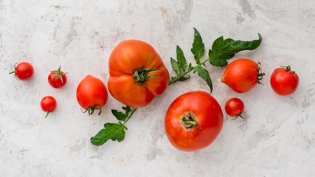 Vista superior del delicioso arreglo de tomates