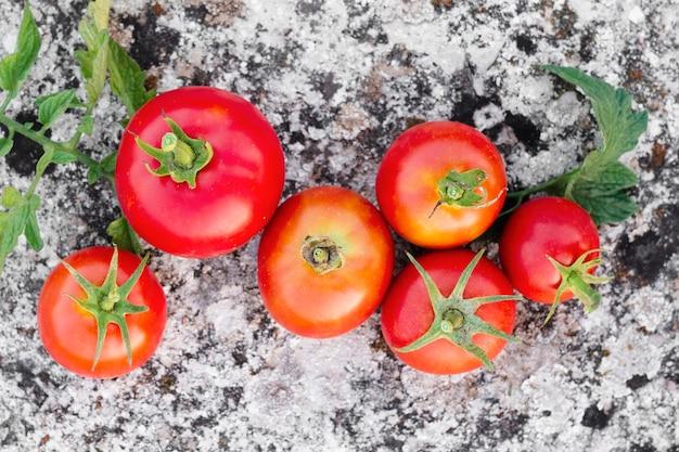 Vista superior deliciosos tomates rojos