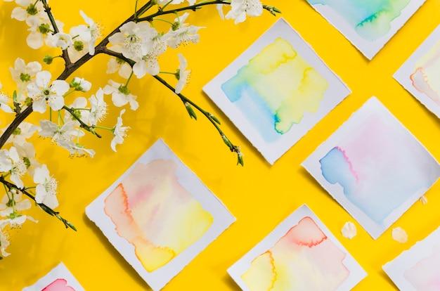 Vista superior dibujos de acuarela y rama floral