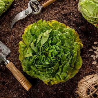Vista superior de ensalada con utensilios de jardinería