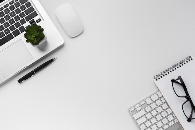 Vista superior del escritorio con computadora portátil y suculenta