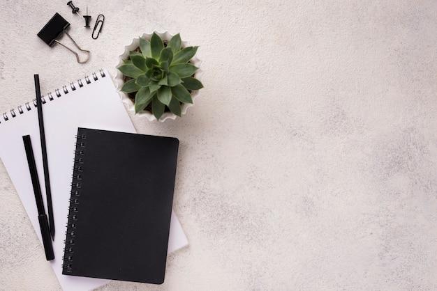 Vista superior del escritorio con cuadernos y planta suculenta