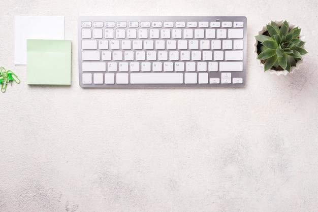 Vista superior del escritorio organizado con teclado y planta suculenta