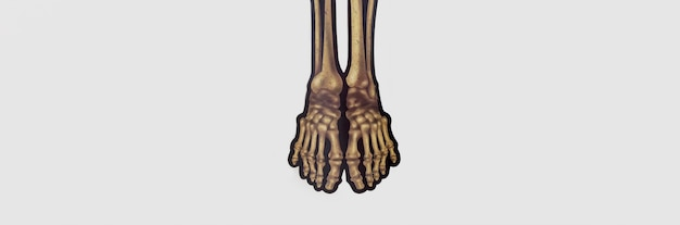 Vista superior espeluznante esqueleto pies para halloween