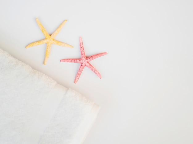 Vista superior estrellas de mar con espacio de copia