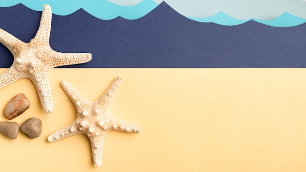 Vista superior de estrellas de mar y rocas con océano de papel
