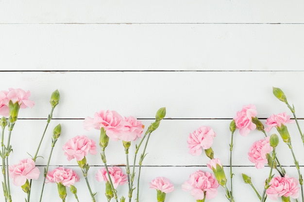 Vista superior fila de flores sobre fondo de madera