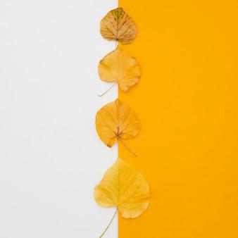 Vista superior fila de hojas de otoño