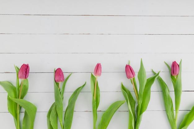 Vista superior fila de tulipanes sobre fondo de madera