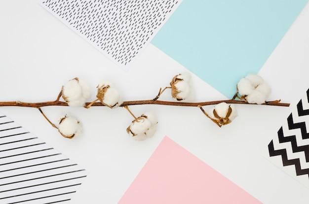 Vista superior de flores de algodón en colores de fondo