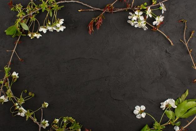 Vista superior de flores blancas sobre el fondo oscuro