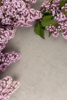 Vista superior flores de color púrpura en el piso gris