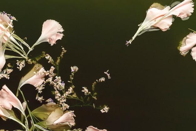 Vista superior de flores de color rosa pálido en agua con espacio de copia