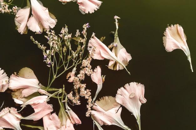 Vista superior de flores de color rosa pálido en aguas negras