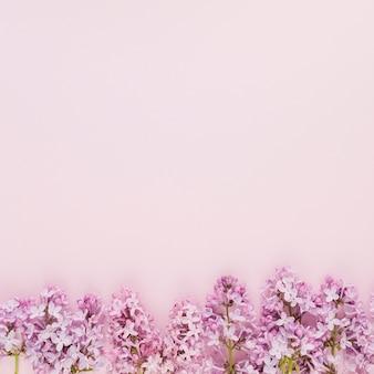 Vista superior flores con copy space