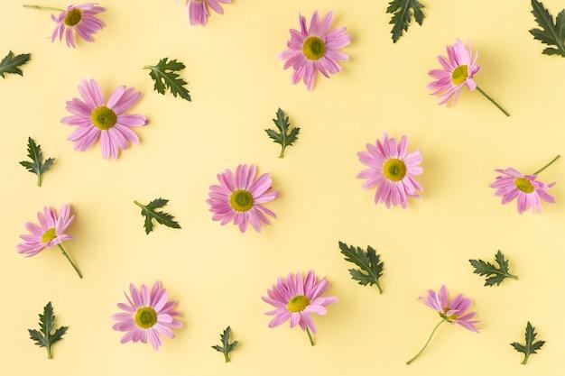 Vista superior de las flores en flor