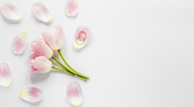 Vista superior flores florecientes