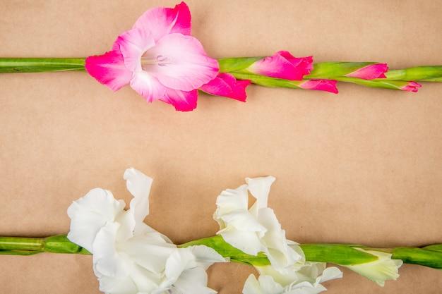 Vista superior de flores de gladiolo de color rosa aislado sobre fondo de textura de papel marrón